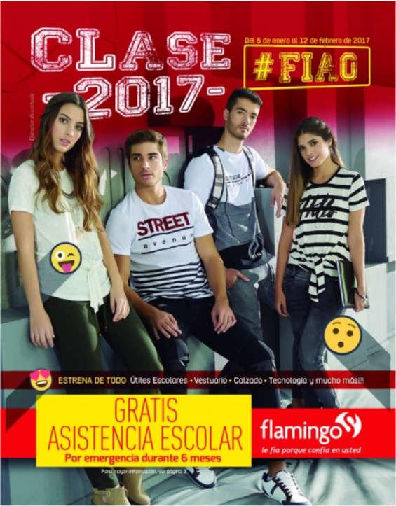 Ofertas de Flamingo, Clase 2017
