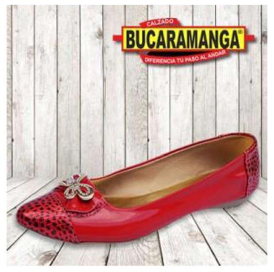 Ofertas de Calzado Bucaramanga, Calzado Formal para Dama
