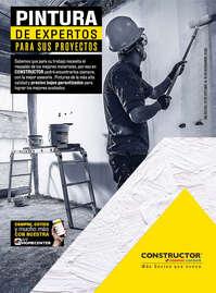 Pinturas Constructor