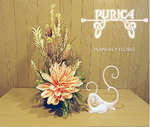 Ofertas de Burica, Plantas y flores