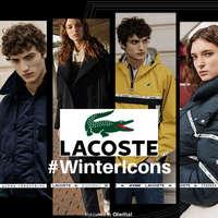 #WinterIcons